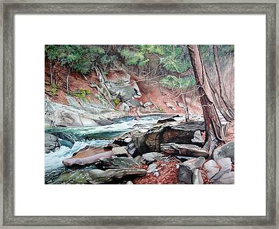 Rapid Water Framed Print
