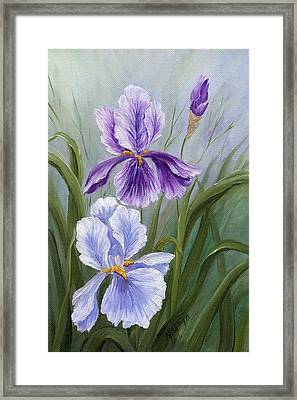 Rapsody Iris Framed Print by Marveta Foutch