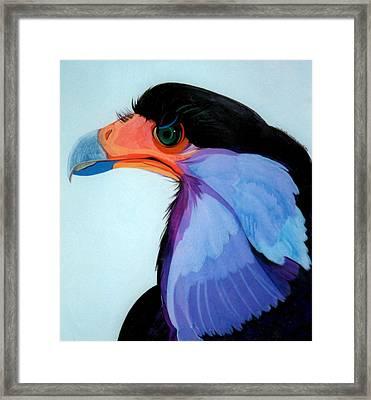 Raptor 5 Framed Print by Marlene Burns