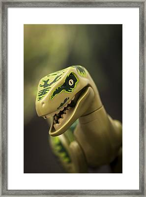 Raptor On The Hunt Framed Print by Samuel Whitton