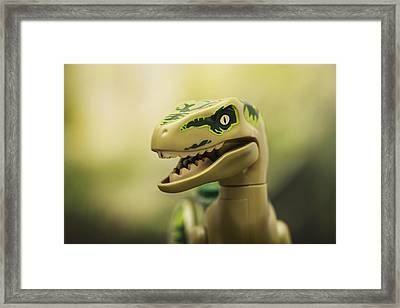Raptor On The Prowl Framed Print by Samuel Whitton
