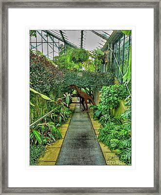 Raptor Seen In Kew Gardens Framed Print