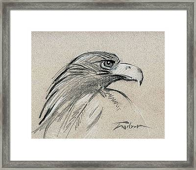 Raptor Two Framed Print by Ron Wilson