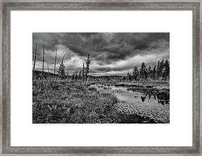 Framed Print featuring the photograph Raquette Lake Bog by David Patterson