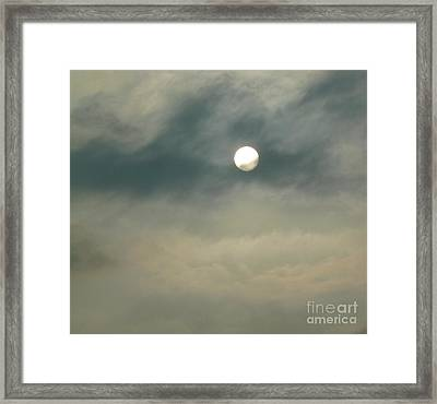 Rare Moment Framed Print by Donna McLarty