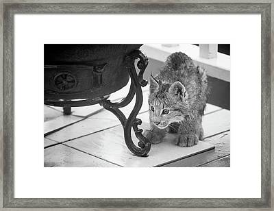 Wait For It Framed Print