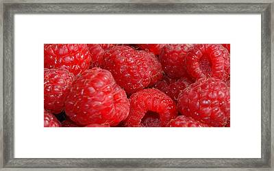 Raspberries Framed Print by Mark Platt
