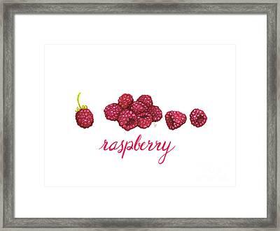 Raspberry Framed Print by Cindy Garber Iverson