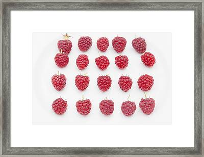 Raspberry Framed Print by Maj Seda