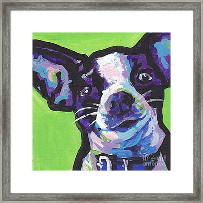 Rat Chi Baby Framed Print by Lea S