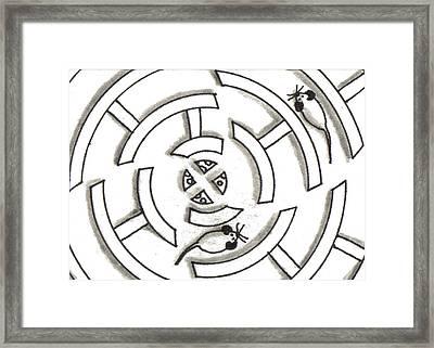 Rat Race Mouse Maze Framed Print by Joshua Hullender