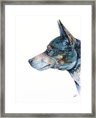Framed Print featuring the painting Rat Terrier by Zaira Dzhaubaeva