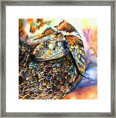 Rattle Snake Framed Print