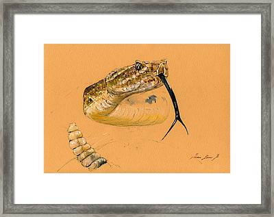 Rattlesnake Painting Framed Print by Juan  Bosco