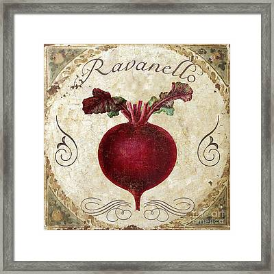 Ravanello Radish Framed Print by Mindy Sommers