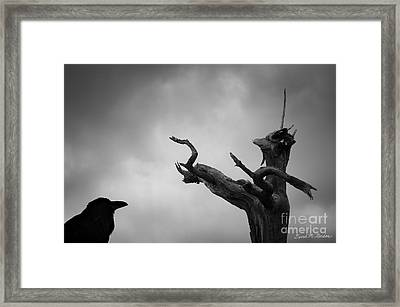 Raven And Shamanic Tree  Framed Print by Dave Gordon