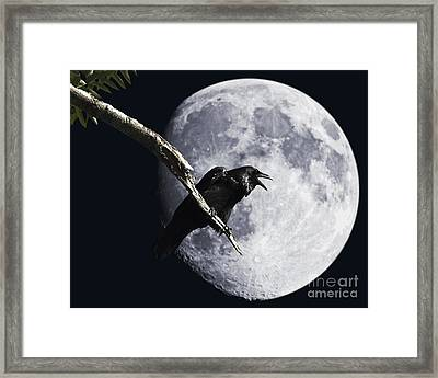 Raven Barking At The Moon Framed Print by Wingsdomain Art and Photography