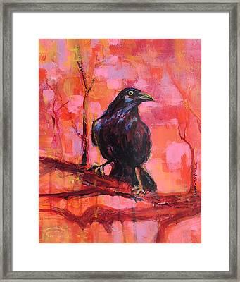 Raven Bright Framed Print
