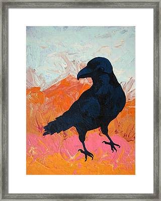 Raven I Framed Print by Dodd Holsapple