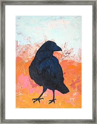 Raven IIi Framed Print by Dodd Holsapple