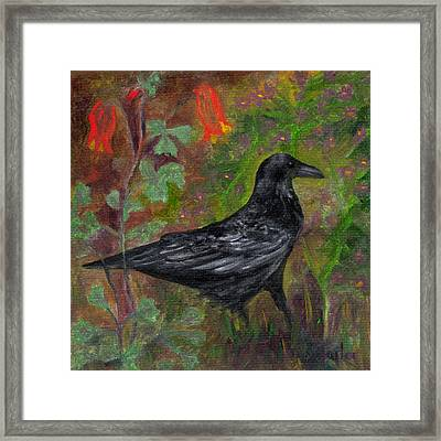 Raven In Columbine Framed Print
