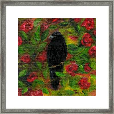Raven In Roses Framed Print