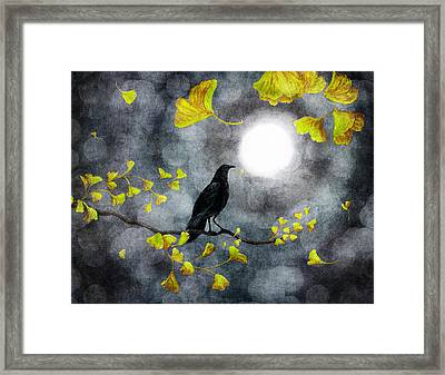 Raven In The Rain Framed Print