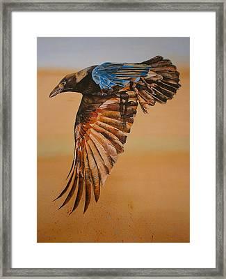 Raven Framed Print by Maria Woithofer