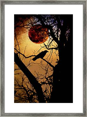 Raven Moon Framed Print by Bill Cannon