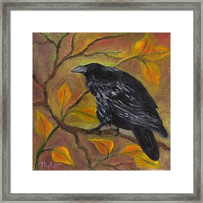 Raven On A Limb Framed Print