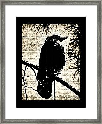 Raven On The Lookout Framed Print