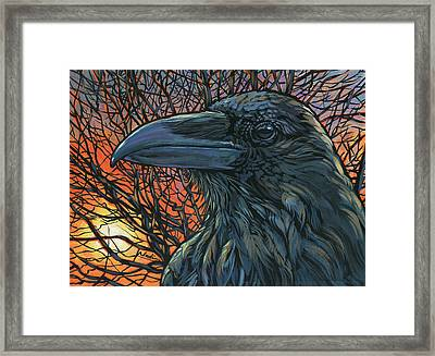Raven Orange Framed Print
