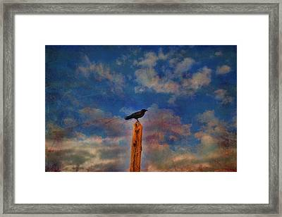 Framed Print featuring the photograph Raven Pole by Jan Amiss Photography