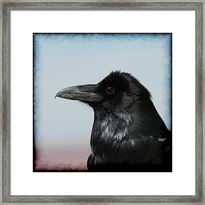 Raven Profile Framed Print