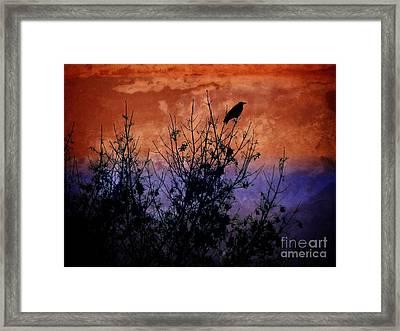 Raven Sentinel Framed Print