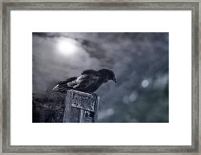 Raven Twilight Framed Print