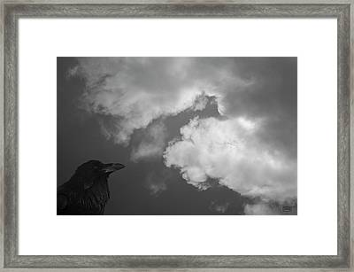 Framed Print featuring the photograph Raven Vi Bw by David Gordon