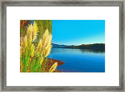 Ravenna Grass Smith Mountain Lake Framed Print
