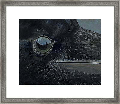 Raven's Eye Framed Print