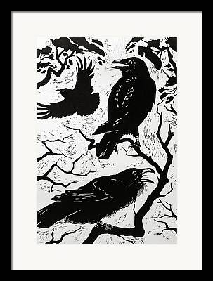 Raven Drawings Framed Prints