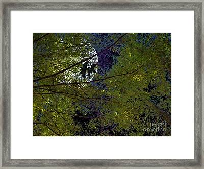 Ravens Of The Harvest Moon Framed Print