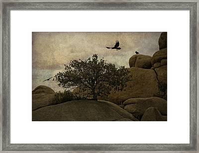 Ravens Searching For Food Framed Print