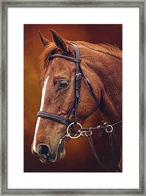 Ravishing In Red Framed Print