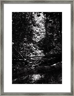 Framed Print featuring the photograph Ray Of Light by Keith Elliott