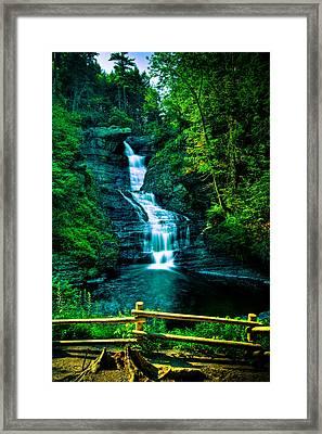 Raymondskill Falls - Hdr Framed Print by David Hahn