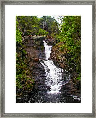 Raymondskill Falls Framed Print by Bill Cannon