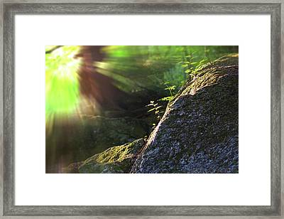 Rays Framed Print by Jerry LoFaro