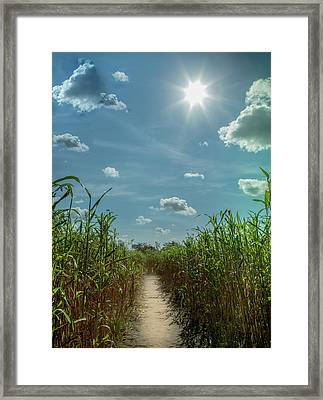 Framed Print featuring the photograph Rays Of Hope by Karen Wiles