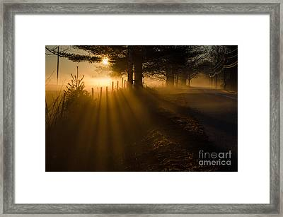 Rays Framed Print by Paul Noble
