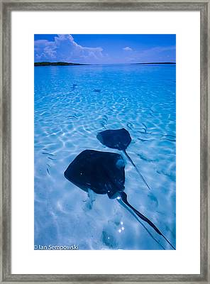 Rays Under Feet Framed Print